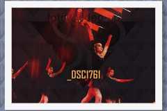 DSC1761