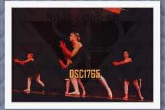 DSC1765