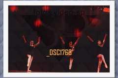 DSC1769