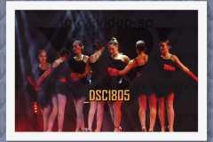 DSC1805