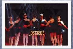 DSC1806