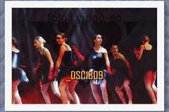 DSC1809