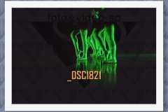 DSC1821