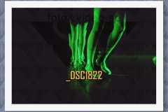 DSC1822