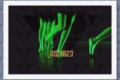 DSC1823