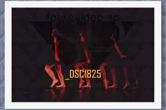 DSC1825