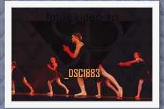DSC1883