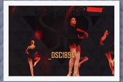 DSC1894
