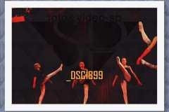 DSC1899