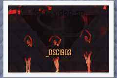 DSC1903