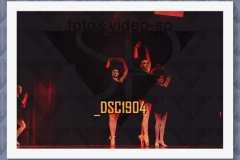 DSC1904