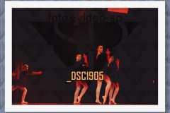 DSC1905