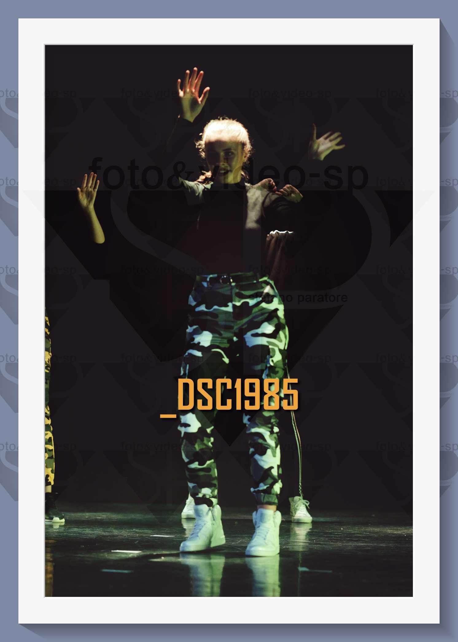 DSC1985