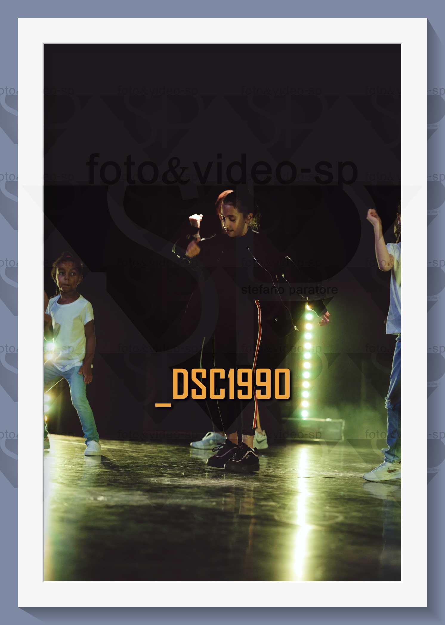DSC1990