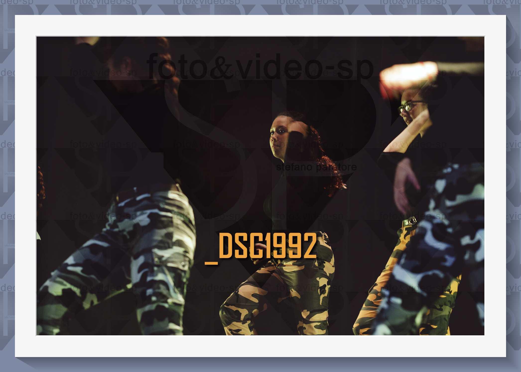 DSC1992
