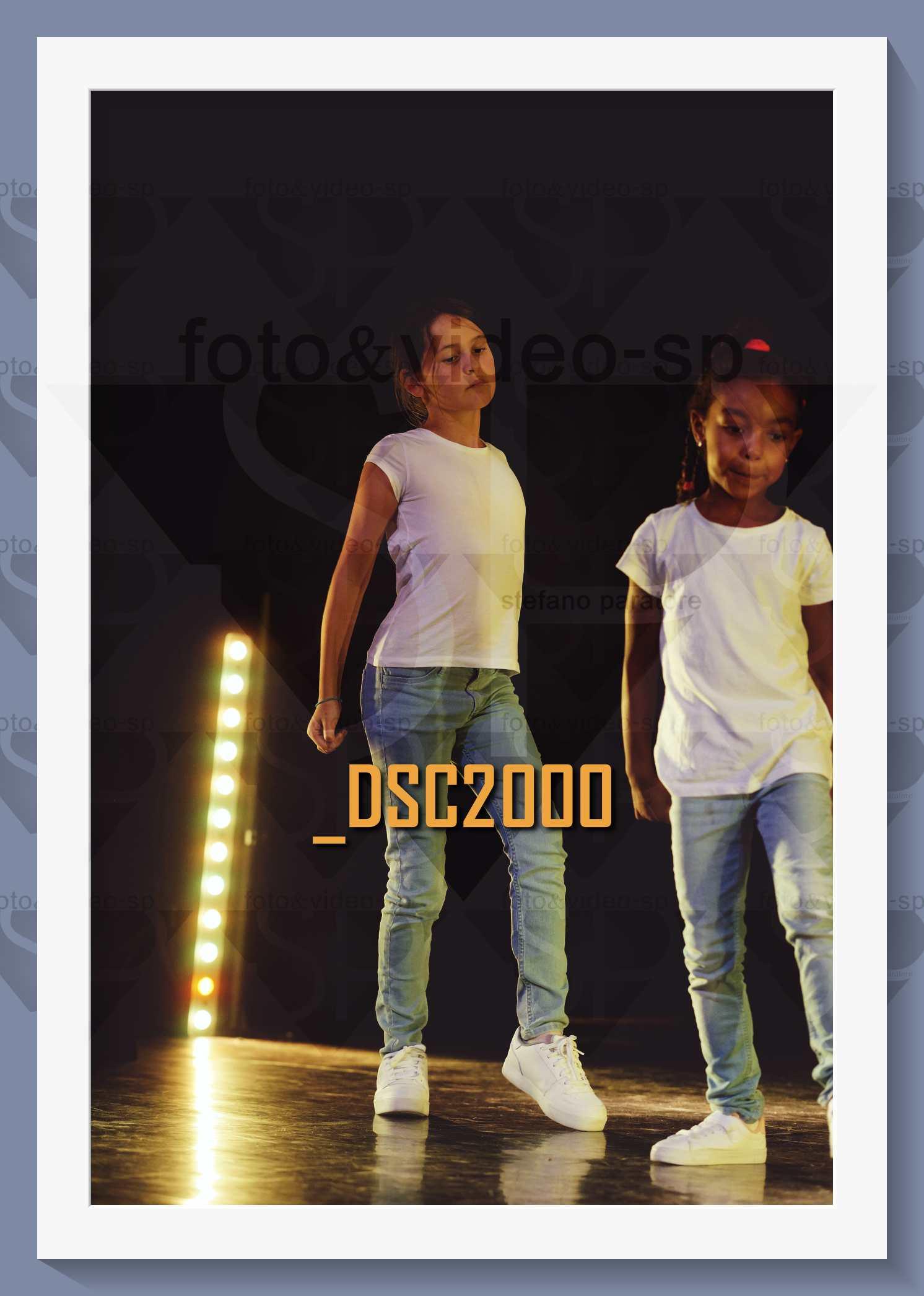 DSC2000