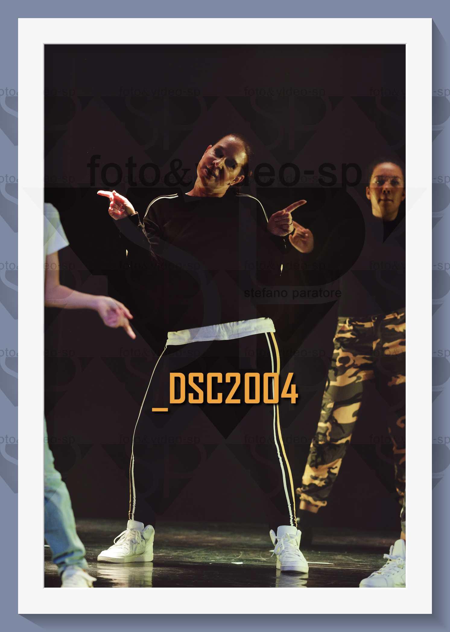 DSC2004