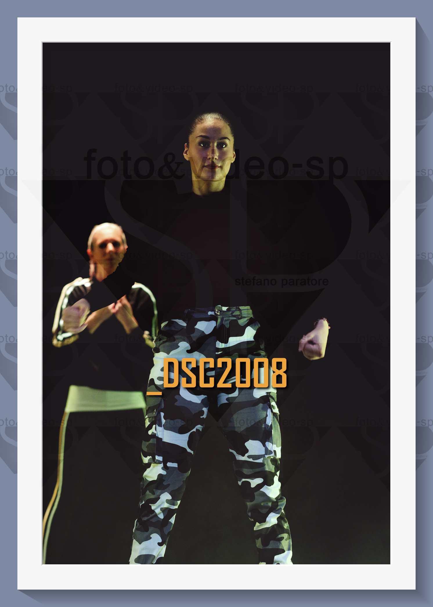 DSC2008