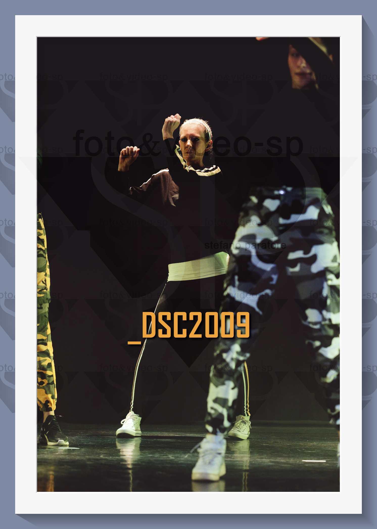 DSC2009