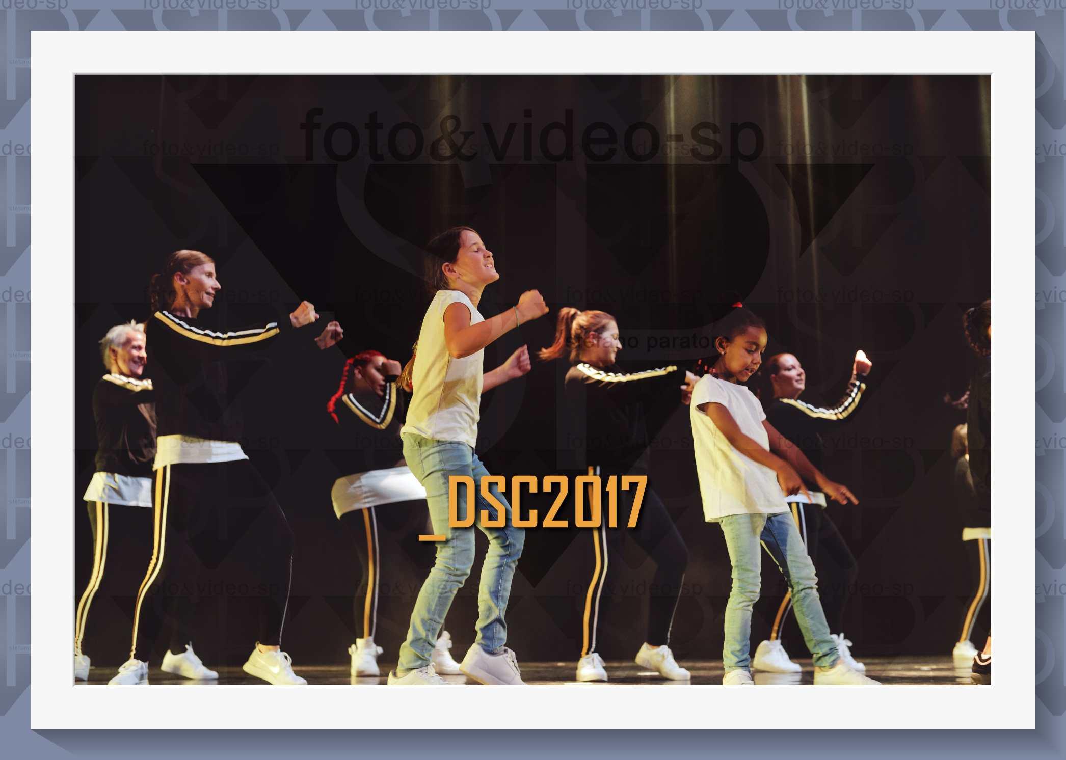 DSC2017