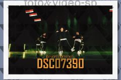 DSC07390