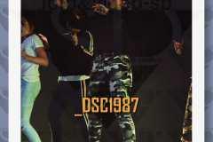 DSC1987