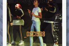 DSC1988