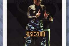 DSC2010