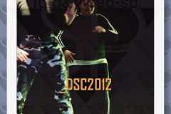 DSC2012