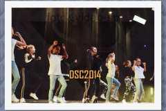 DSC2014