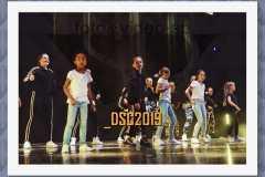 DSC2019