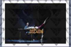 DSC4014