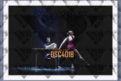 DSC4018