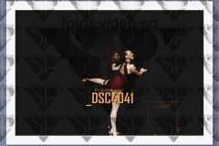 DSC4041