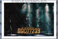 DSC07239