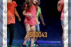 DSC0043
