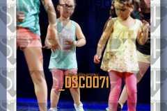 DSC0071