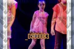 DSC0083