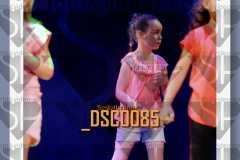 DSC0085