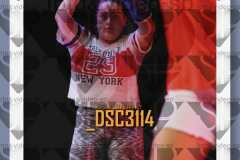 DSC3114