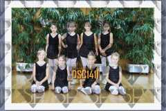 DSC1411