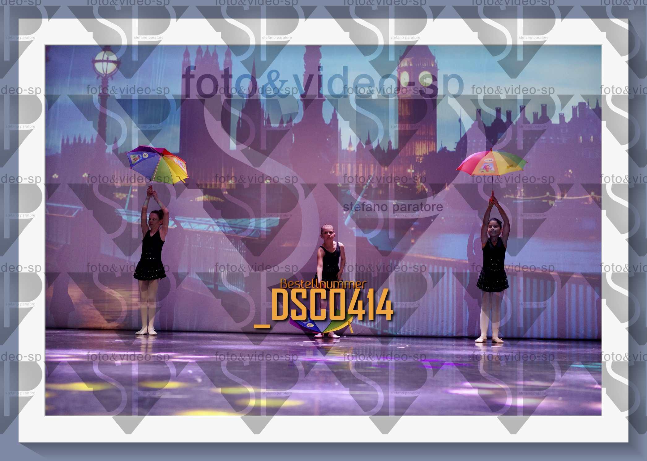 DSC0414