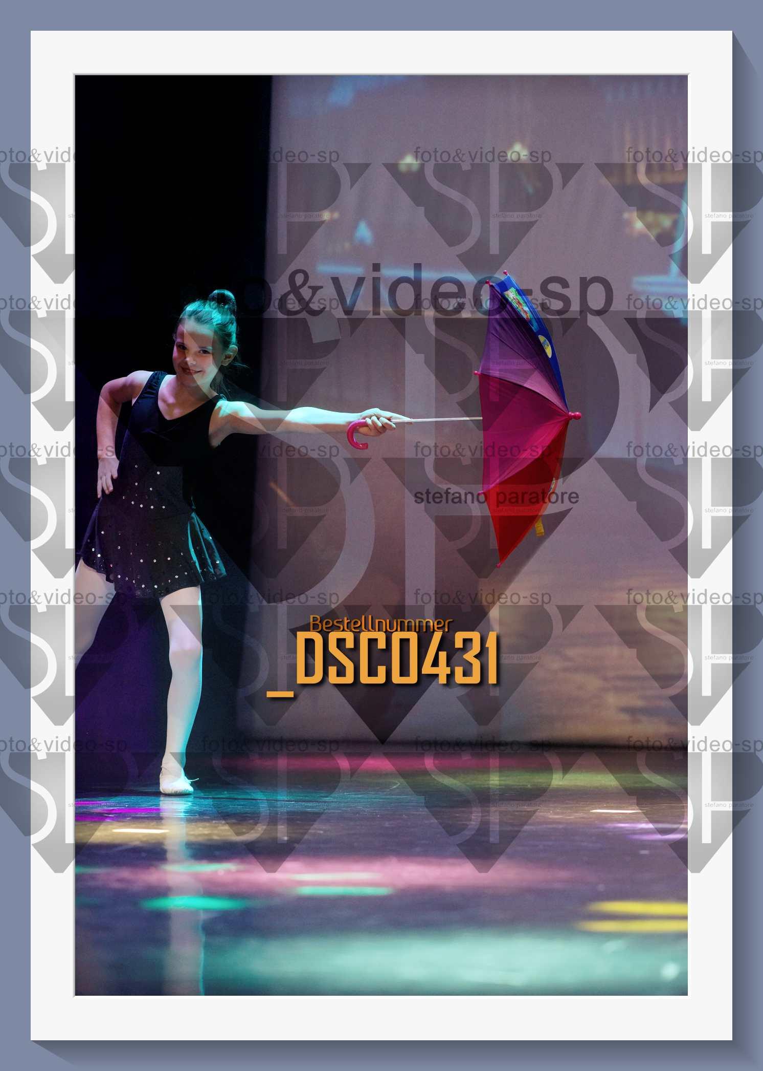 DSC0431