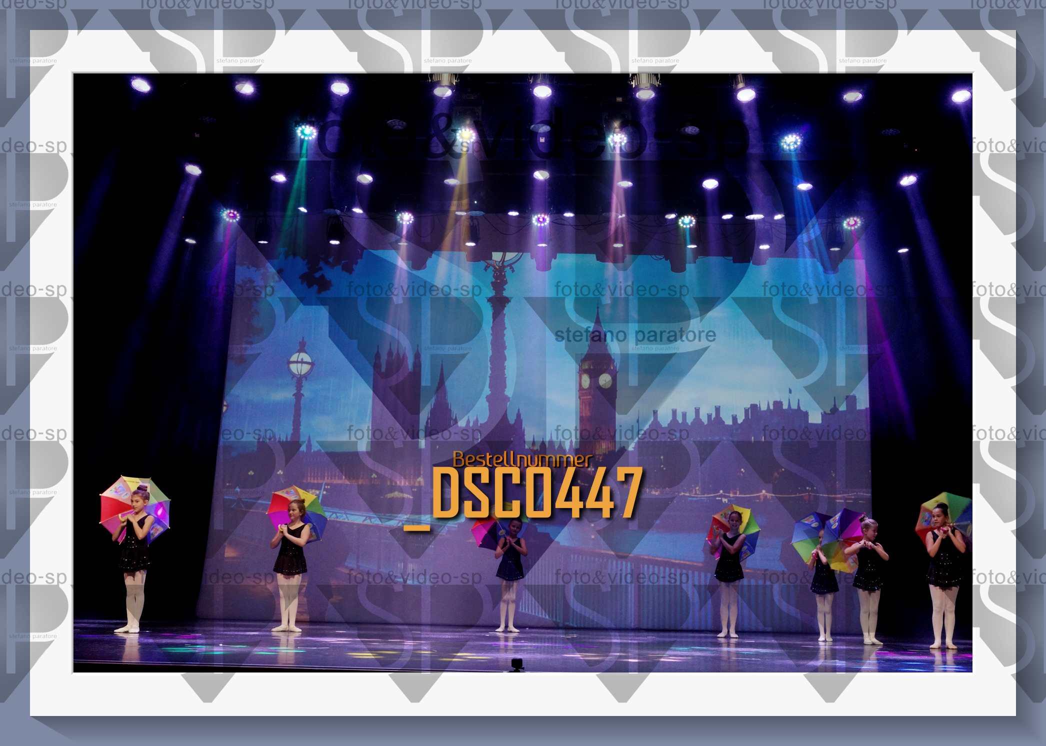 DSC0447