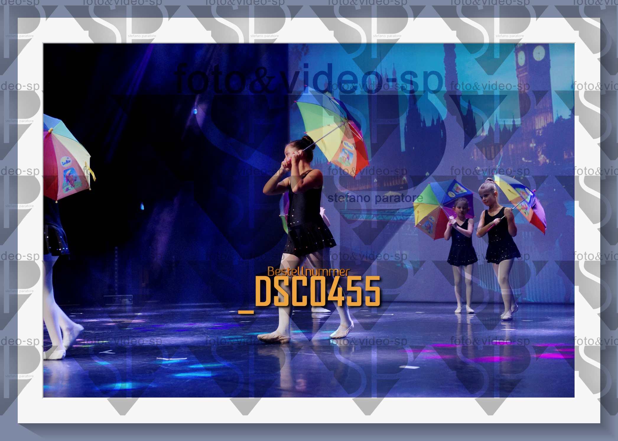DSC0455