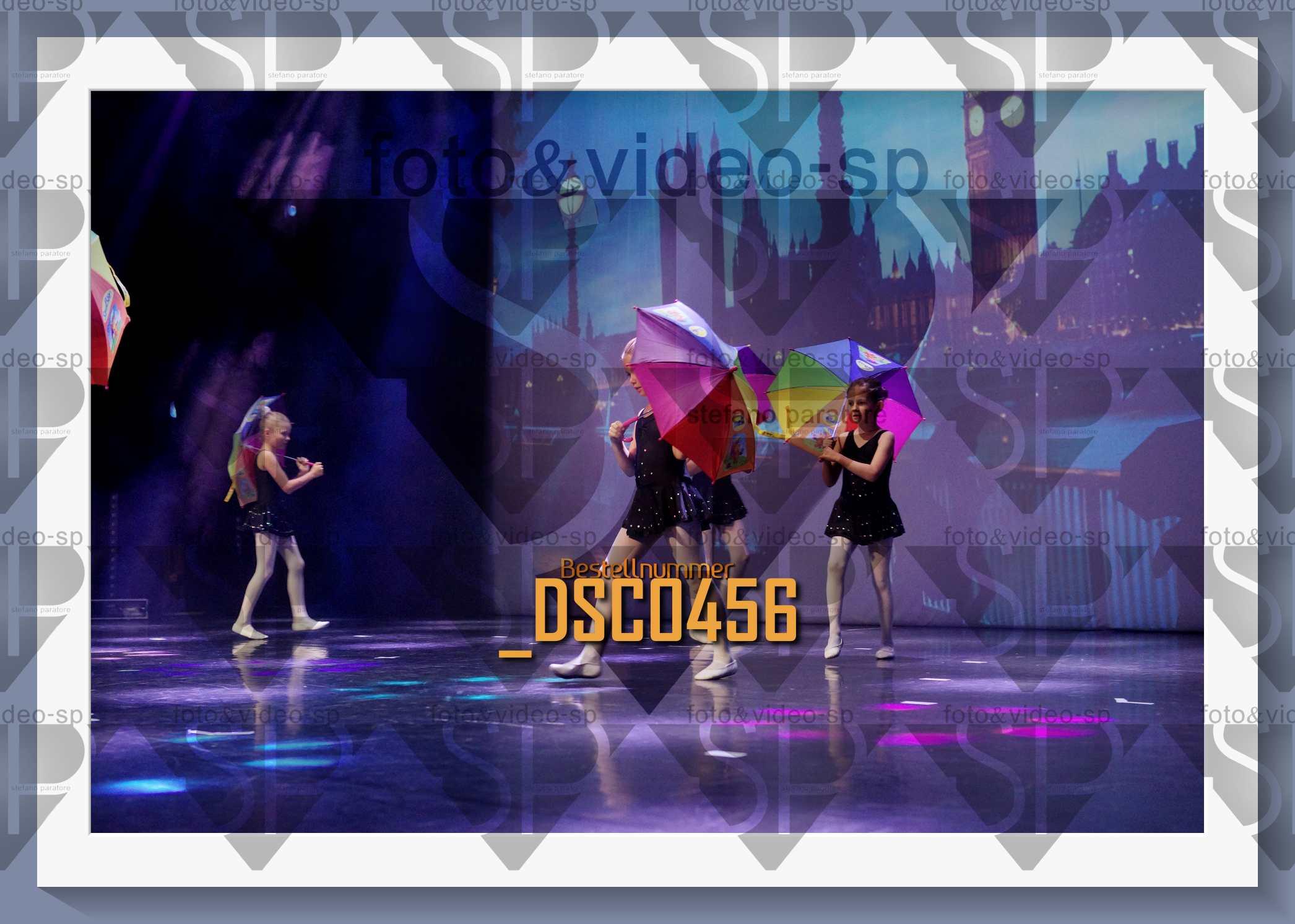 DSC0456
