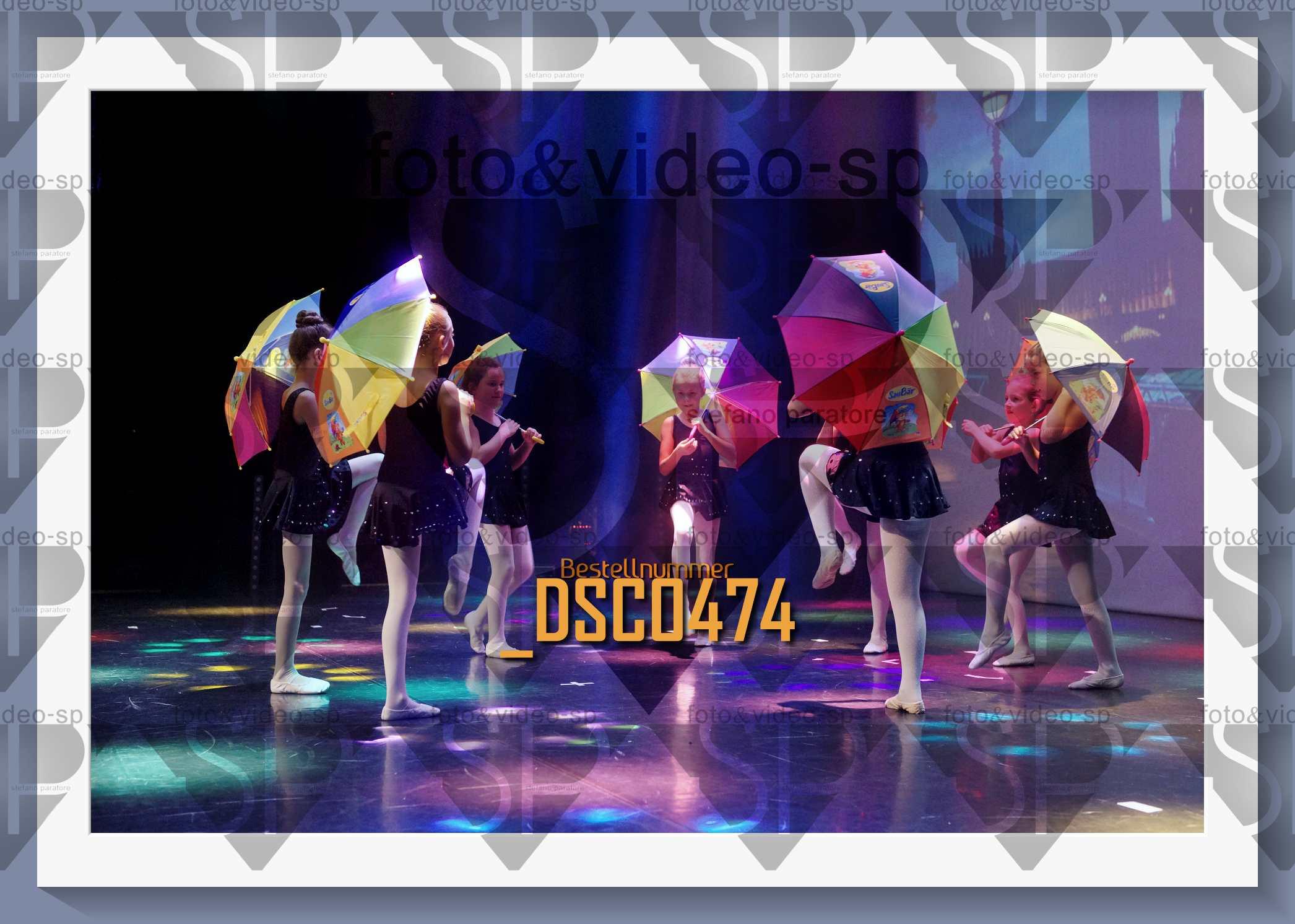 DSC0474
