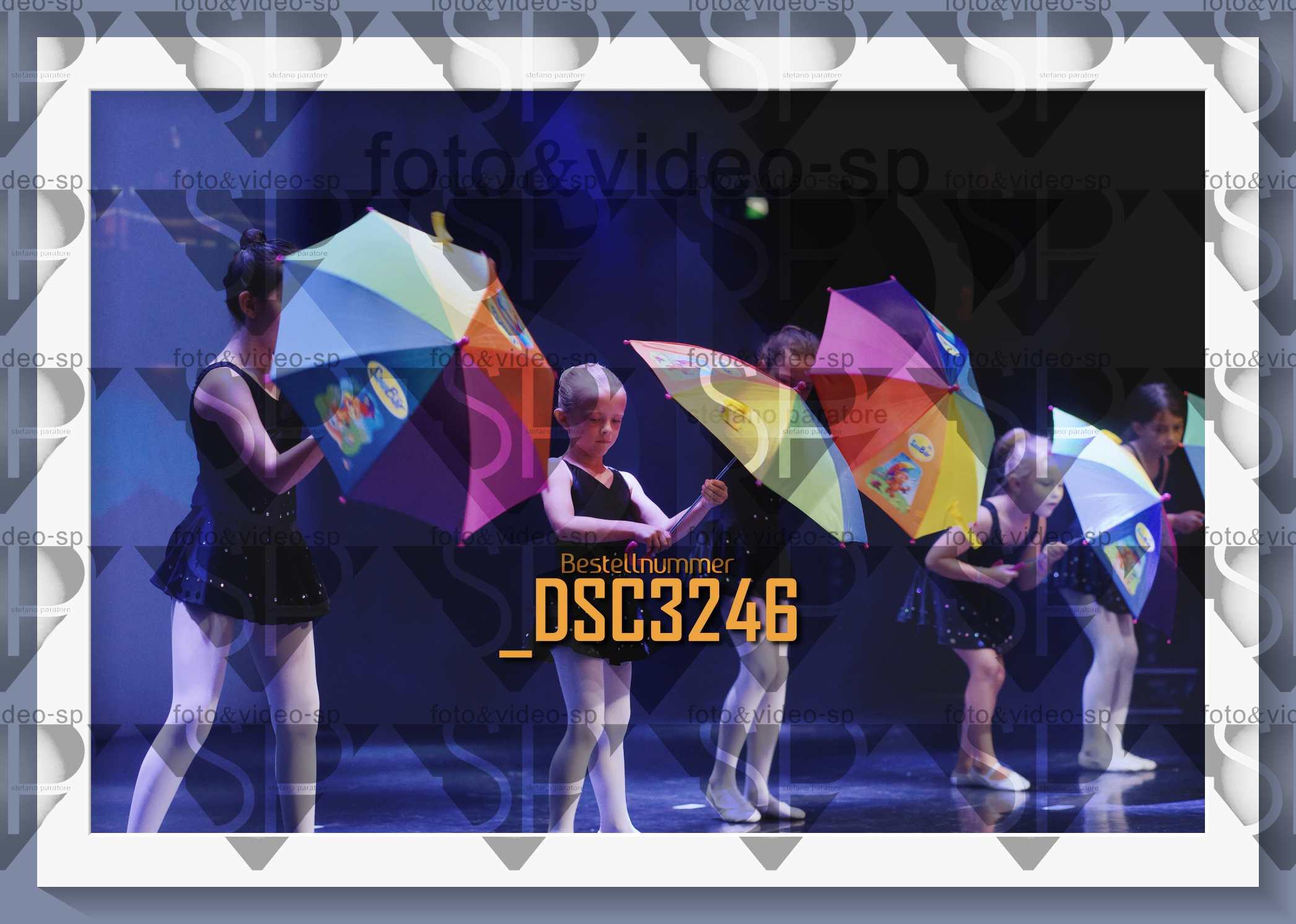 DSC3246