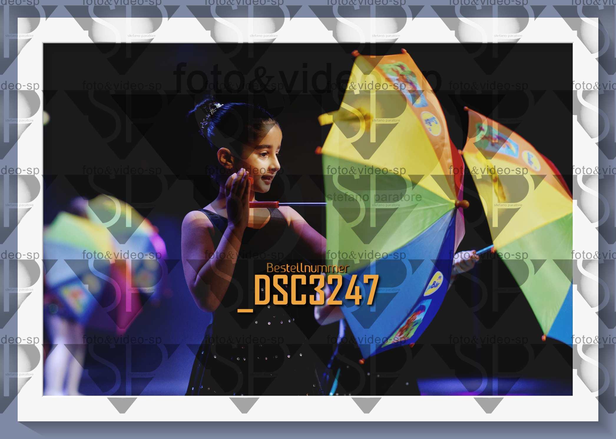 DSC3247