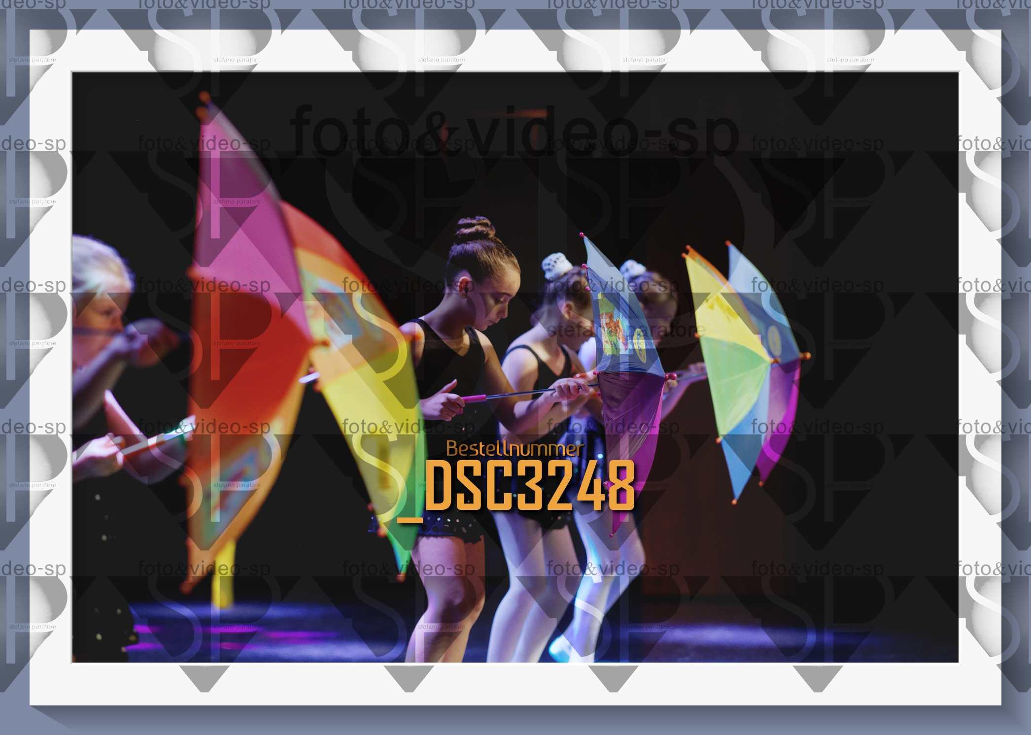 DSC3248